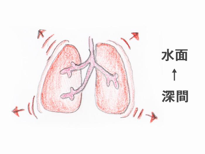 急速な浮上は、肺の膨張をおこし危険です