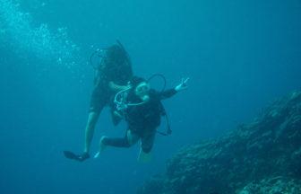 体験ダイビングは、手厚いサポートをしてくれる��ョップにお願いしましょう