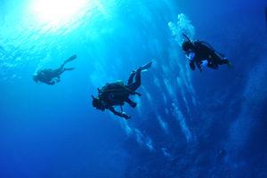 ダイビングマナー1